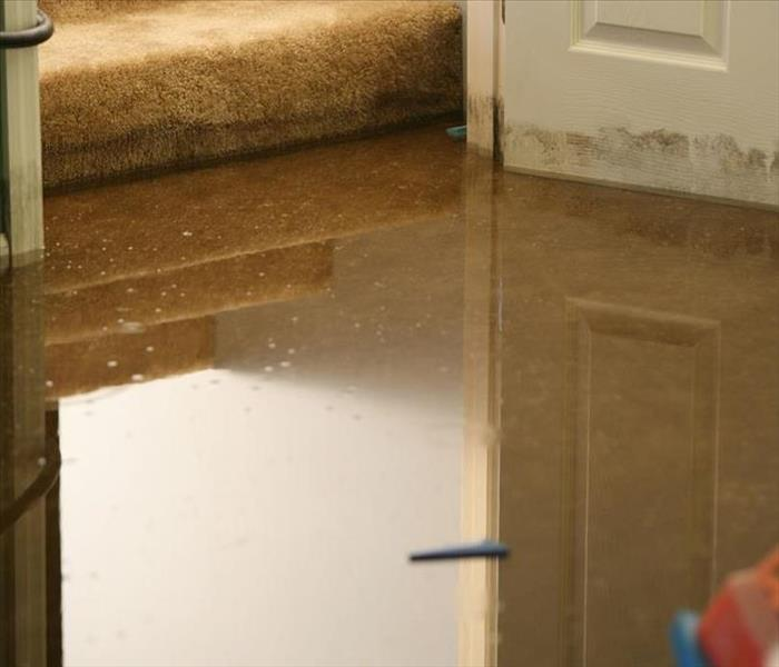 image of murky standing water in a home