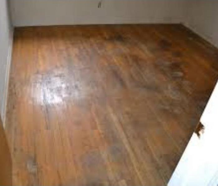 wood floor with erosion marks from water damage