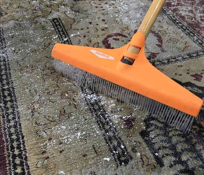 Cleaning Carpet Cleaning in Niles, OH