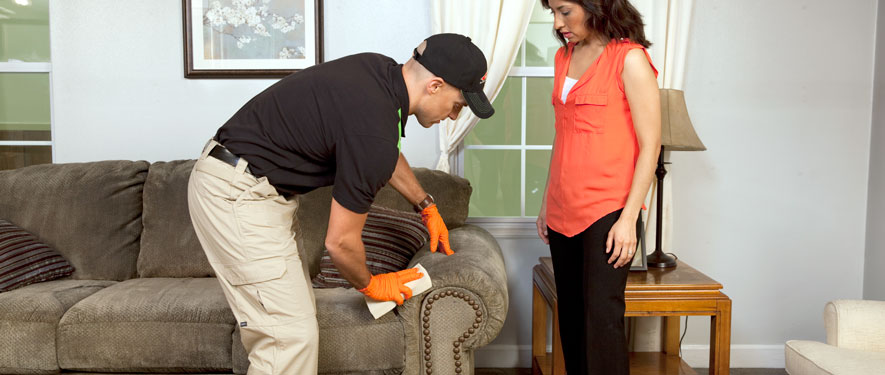 Warren, OH carpet upholstery cleaning
